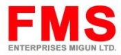 FMS ENTERPISES MIGUN LTD
