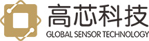 Wuhan Global Sensor Technology Co., Ltd
